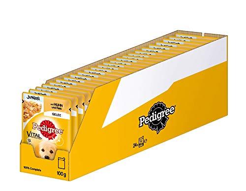 Pedigree Vital Protection Hundenassfutter für Welpen im Beutel – Hundefutter in Gelee mit Huhn & Reis – 24 x 100g Großpackung